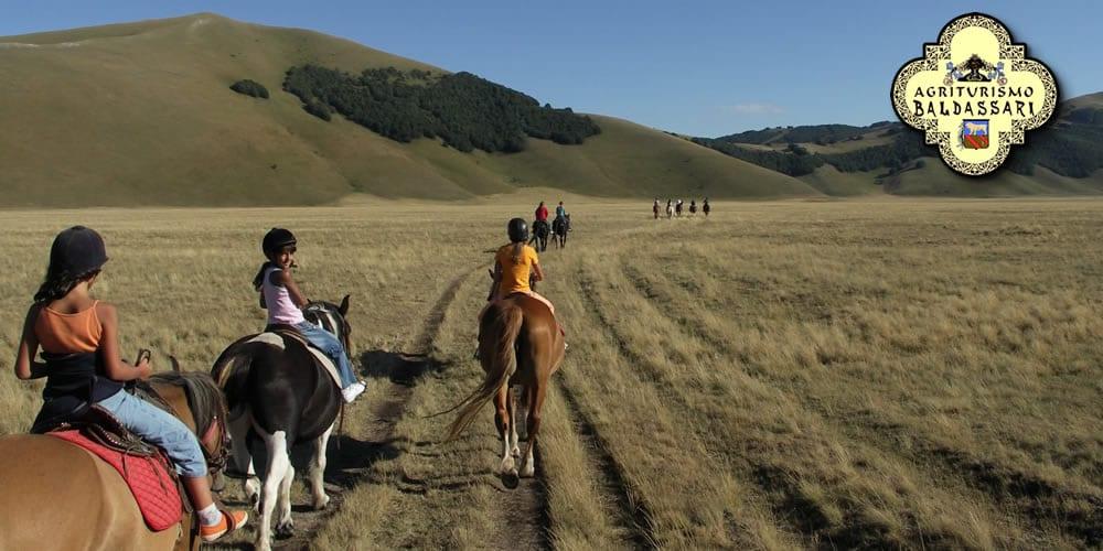 maneggio e passeggiate a cavallo